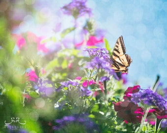 """Discounted 8x10"""" butterfly photo print - yellow swallowtail, flowers, summer, colorful art"""
