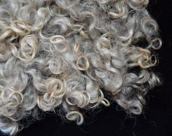 Curly silky washed Lincoln locks for doll hair, spinning, weaving, felting, and crafting: Silver
