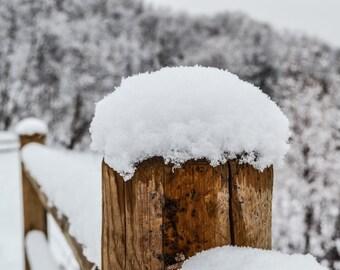 Snowy Fence Print