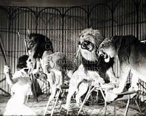 Vintage Woman Lion Tamer Photo Print - Instant Download