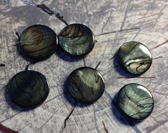 Shells beads 20mm