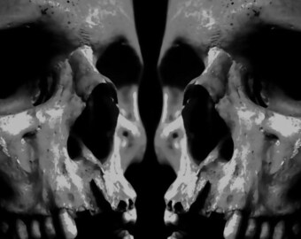 Cool Human Skulls Pop Art Paint By Number Kit