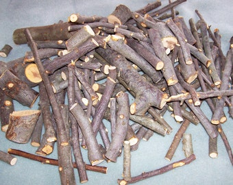 Apple Wood Limb SCRAPS, Branch Trimmings, Bunny, Chinchilla Food, 2 Pounds, Pet Treats, Rabbit Food, Malus