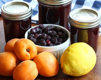 Apricot Blueberry Jam 8oz- TheSunshineJellyCo