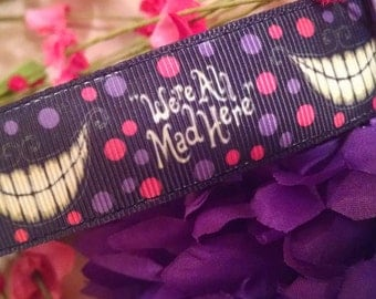 "Were All Mad Here 1"" Width Adjustable Dog Collar"