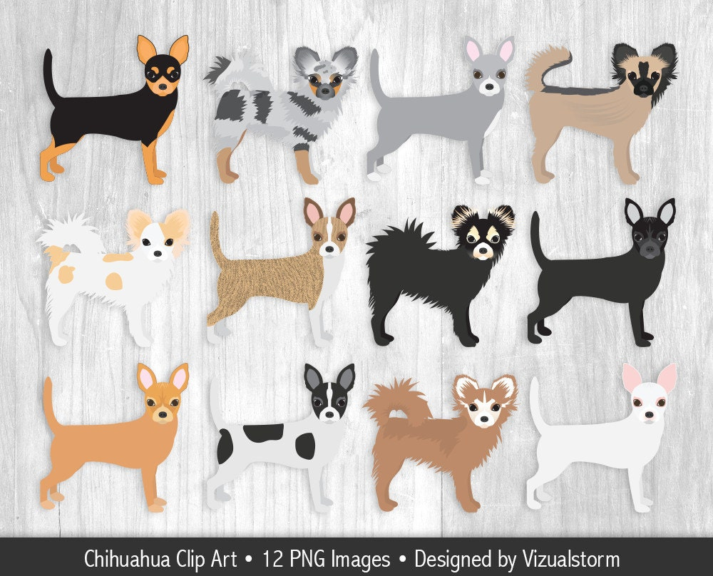 Scrapbook ideas for dogs - Chihuahua Clipart Hand Drawn Chihuahua Dog Illustrations Short Hair Long Hair Sable Black White Fawn Blue Merle Toy Dog Scrapbook