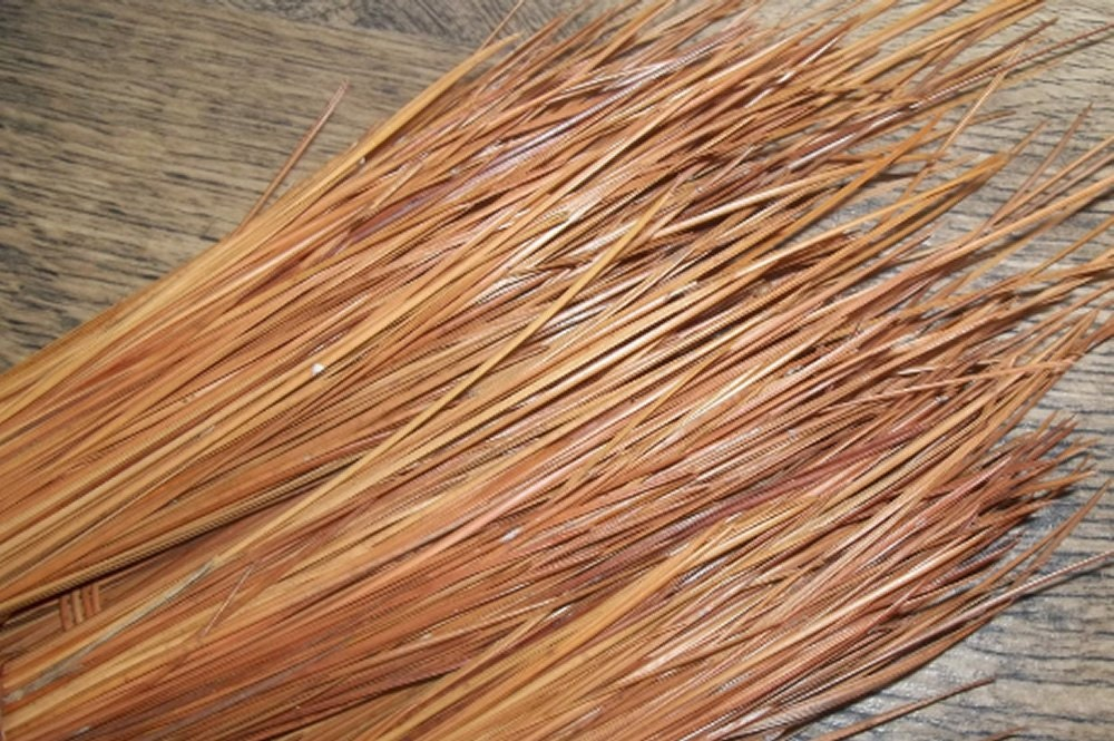 Basket Making Supplies Florida : Lb to inch long leaf pine needles for needle