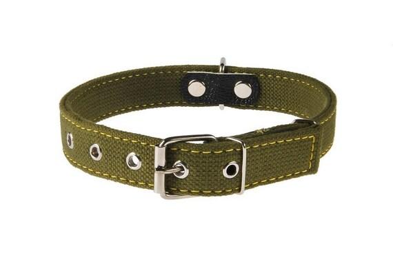 ... Size S M L XL XXL XXXL Sturdy Plain Heavy Duty Hunting Dog Breeds