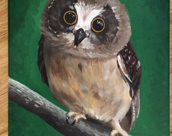 Owl art print on Canvas from original owl painting