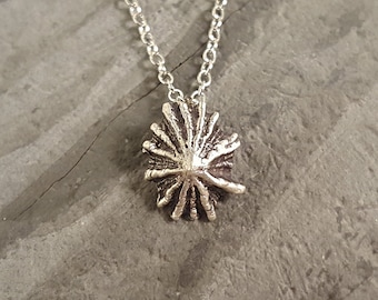 Micro Limpet Shell Necklace