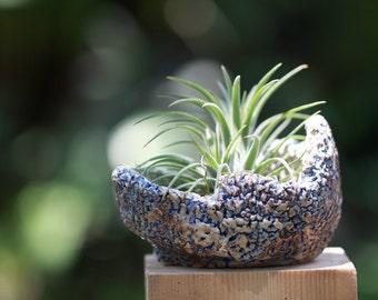 handmade porcelain, succulents planter pot with drain hole
