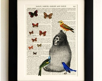 ART PRINT on old antique book page - Birds with Skeleton and Butterflies, Vintage Upcycled Wall Art Print, Encyclopaedia Dictionary Page