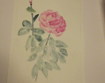 25% Off Entire Store Flower27 Rose, original, watercolor, painting