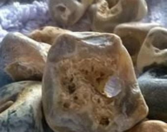 adder stones, hag stones, witch stones, Odin stones,Glain Neidr, snake eggs, holy stones