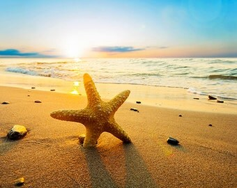 Starfish on the beach - SKU 0234