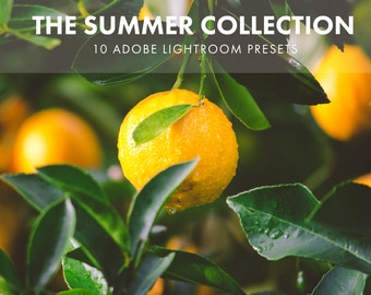 Adobe Lightroom Preset Summer Collection