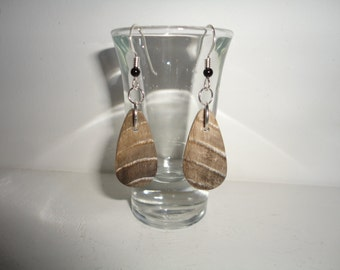 Petrified Wood, Sterling Silver Dangle Wire Earrings
