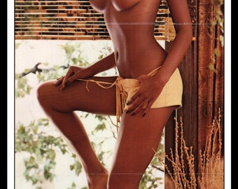 "Mature Playboy April 1973 : Playmate Centerfold Julie Woodson 3 Page Spread Photo Wall Art Decor 11"" x 23"""