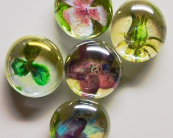 5 Flower IllustrationsUp cycled Magnets
