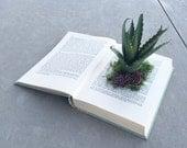 Book of Succulents. Succulent Planter. Book Planter. Succulent Book Planter. Tabletop Decor. Bohemian Decor. Home Decor