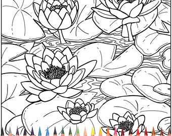 monet coloring pages water lilies dudeindisneycom