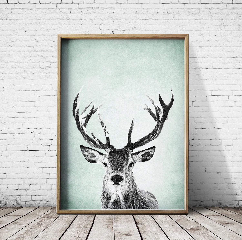 Wall Art Print Deer Print Deer Antlers Stag Print Animal Print