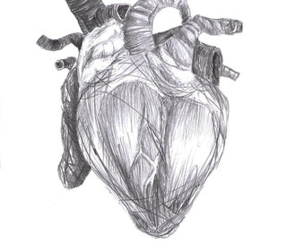 Drawing: Heart