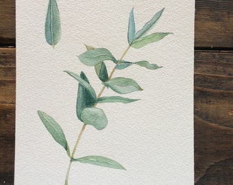 Original 5x7 eucalyptus leaves watercolor painting
