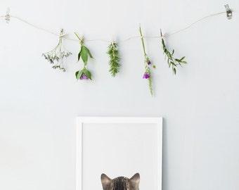 Cat back print - Minimalist print - Nursery wall art - Cat back print - Coati animal print - Nursery animal print- Adorable nursery art