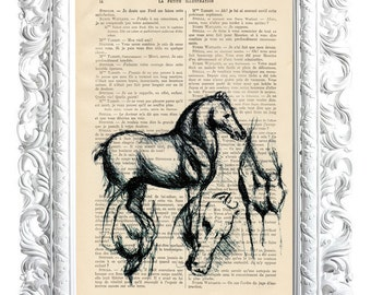 Horses. About the print French publication of the Enlightenment. 28x19cm.