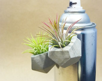 Geometric Concrete Air Plant Magnet // Tillandsia Holder // Hello Tilly Airplant