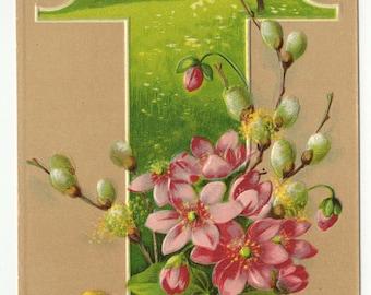 Vintage Easter Postcard: Chick W/Flowers,  German Postcard