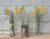 Image of Daffodil flowers , mum gift, Mothers gift, Anniversary present, Springtime sunny Daffodils, Spring flowers, Birthday gift, Gardeners gift,