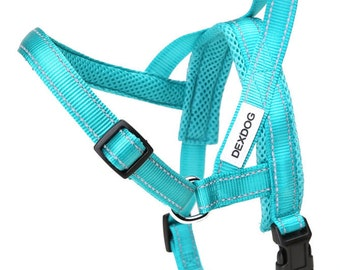 X-Large Turquoise Dog Harness XL Big Dog Golden Retriever Step In Harness Cute Vest Safety Heavy Dog Walking Padded Dog Harness by DEXDOG