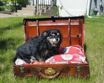 Vintage Suitcase Dog Bed