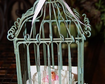 Baby Shower Bird Cage