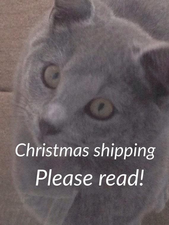 ORDER BY December 11 for Christmas Delivery