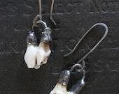 Chompers - White Tail Deer Tooth Earrings