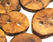 Handmade Wooden Tree Branch Buttons, Natural Wood Buttons, Oak Wood, Set of 6, Mixed Sizes