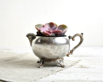 Silver Creamer, Succulent Planter, Rustic Wedding Shabby Chic Decor