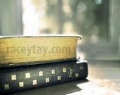 Office Decor, School Books, Silver, Green, Gray, Rustic, Neutral Wall Art, Book Photography