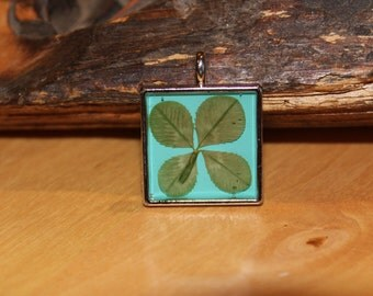 Real Four Leaf Clover Charm for Necklace or Wedding Bouquet Something Blue Good Luck