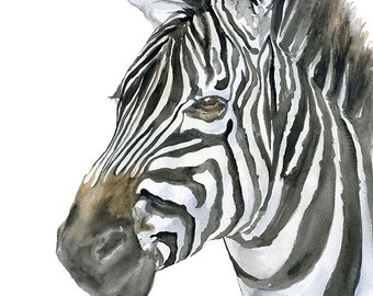 Zebra Watercolor Painting - 8 x 10 - 8.5x11- Giclee Print Reproduction African Animal Safari Art Wildlife