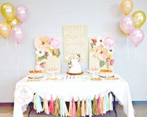 Party Decoration Package - Tassel Garland and Balloons - party decorations, wedding cake table decor, peach,blush, coral, mint and gold