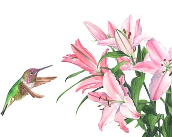 Hummingbird with Lilies print of watercolour painting 5 by 7 size smallest print - HBL6815 - Lily painting - hummingbird watercolor painting