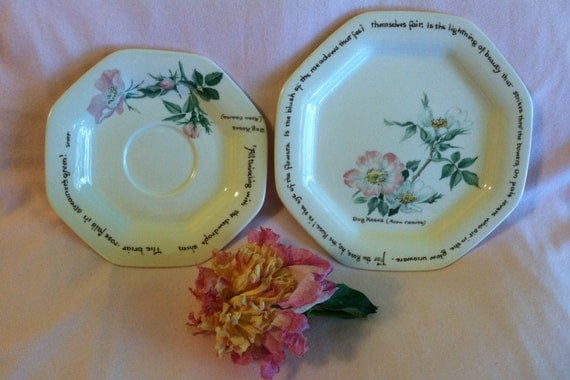 Dogwood Rose Noritake Plates The Country Diary of an Edwardian Lady Edith Holden 1906 Poetry Pink White Floral Dessert Dishes Vintage 1970s