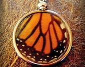 REAL Butterfly Wing Necklace, Monarch Butterfly, Orange Butterfly, Nature Jewelry