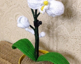 Crocheted Orchid (white) - Potted Plant