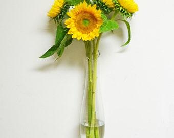Wall Vase /Long Tear Drop Glass Vintage Wall Vase / Modern Vase /  2 Available