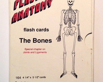 Flash Anatomy cards of The Bones skull skeleton by Bryan Edwards
